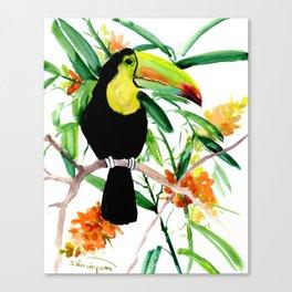 Toucan, Tropical Art, tropics Canvas Print