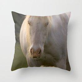 Lost unicorn Throw Pillow