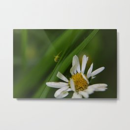 The flower and the friend Metal Print
