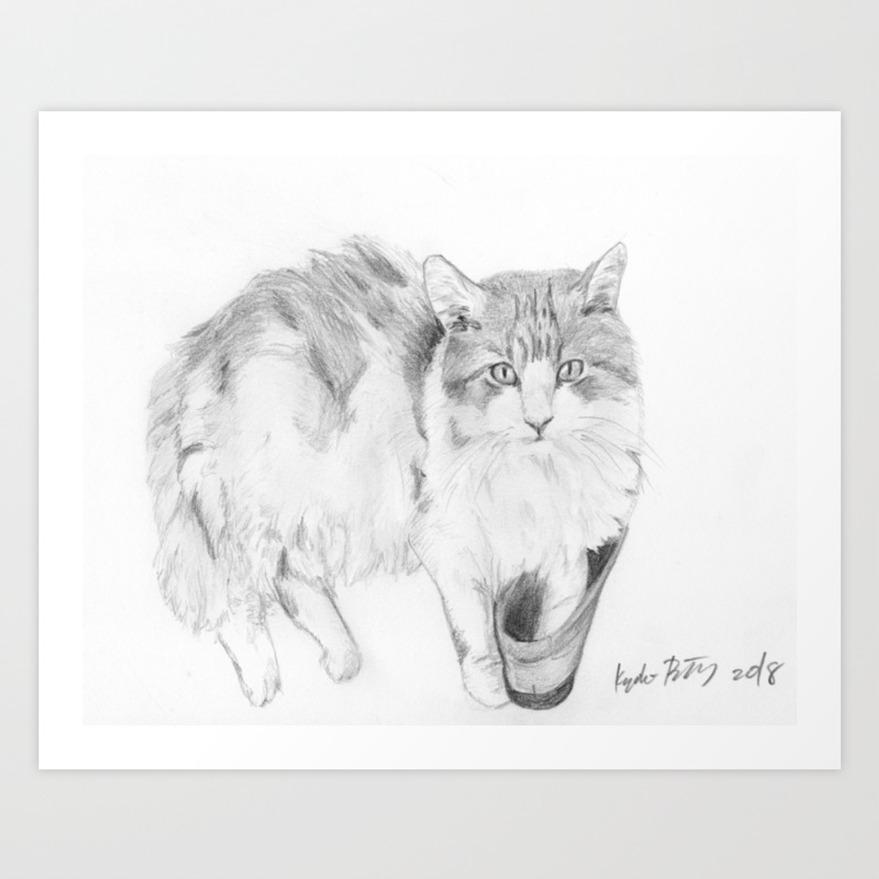 Cat realistic pencil sketch drawing art print