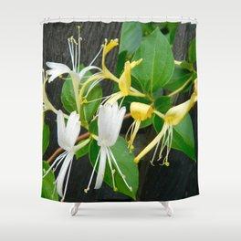 Honeysuckle 3 Shower Curtain