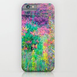 A Walk Among the Colors V iPhone Case