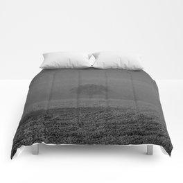 Foggy tree Comforters