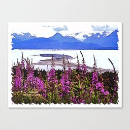 Spit and Fireweed Canvas Print