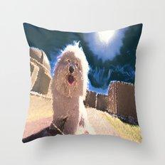 Coton de Tulear Throw Pillow
