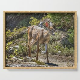 Crossing Paths with a Black-Tailed Deer Serving Tray