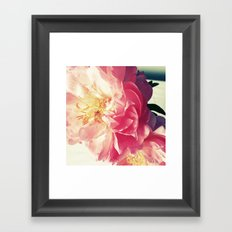 Peony Love Framed Art Print