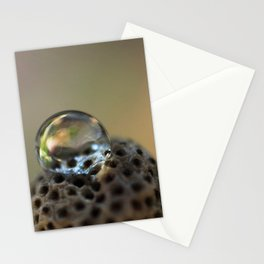 Droplet Macro Stationery Cards