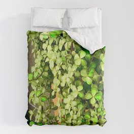 Green Leaves By Stucco Wall Comforters