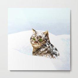 Snowy Cat Metal Print