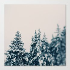 Afte The Storm Canvas Print