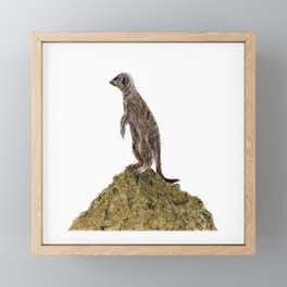 Meerkat on Lookout Duty Framed Mini Art Print
