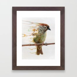 Sparrow Framed Art Print