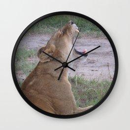 Sleepy Simba Wall Clock
