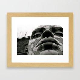 Pitti Framed Art Print
