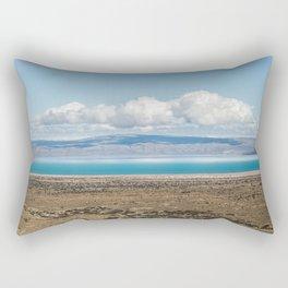 Blue Patagonia Rectangular Pillow