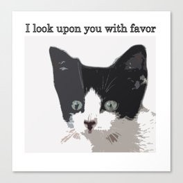 bully kitten i look upon you with favor Canvas Print
