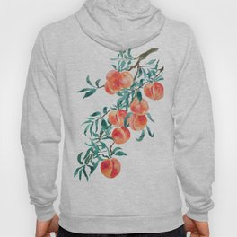 peach watercolor Hoody