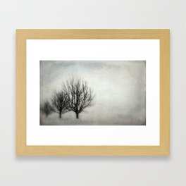 Winter in Matsqui Framed Art Print