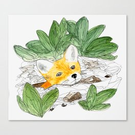 Fox Hole Canvas Print