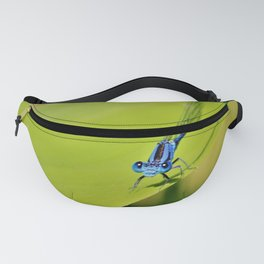 Here's Lookin At You Kid - Blue Eyed Dragonfly by Reay of Light Fanny Pack