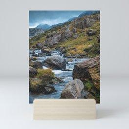 River in the Mountains II Mini Art Print