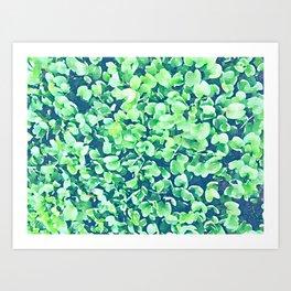 Green carpet Art Print
