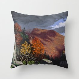 Passing storm, Thacher Park, Albany Throw Pillow