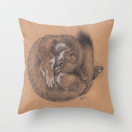 Ball o' Stoat Throw Pillow