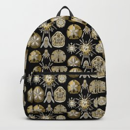 Ernst Haeckel Echinidea Sea Urchin Backpack