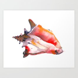 Sea Shell She Sell Art Print