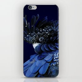 Australian Red-Tailed Black Cockatoo in Blue iPhone Skin