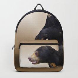 Dog And Bear Backpack