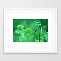 ladybug Framed Art Prints featuring Ladybug by Arevik Martirosyan