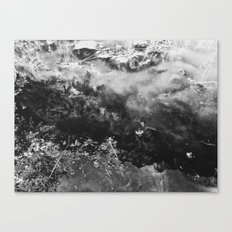Black N White Canvas Print