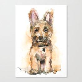 DOG#19 Canvas Print