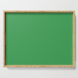 Solid Fresh Clover Green Color Serving Tray