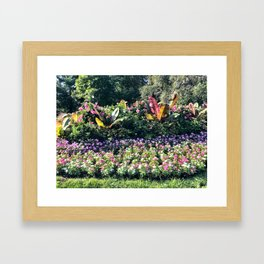 Live in Color Framed Art Print
