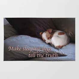 The Truth About Sleeping Dogs Rug