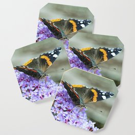 Butterfly II Coaster
