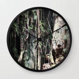 Liana and Rocks Wall Clock