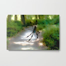 On a precarious path Metal Print