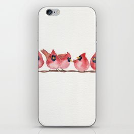 Cardinal on the wire iPhone Skin