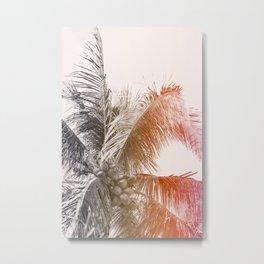 Toasted Coconut Metal Print