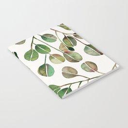 Silver Dollar Eucalyptus – Green Palette Notebook