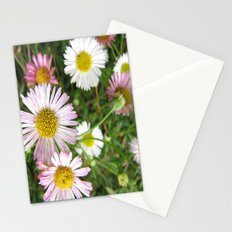 Daisies in the Grass Stationery Cards