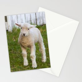 3 Little Lambs Stationery Cards