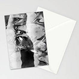 Lotus 01 Pb Tas Stationery Cards