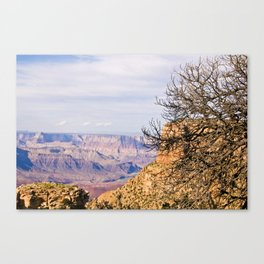 Panoramic view of the Grand Canyon Canvas Print