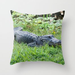 Sinister Grin Throw Pillow